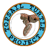 Karen Beasley Sea Turtle Hospital